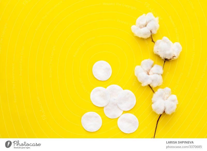 Natürliche Baumwollblüten und Wattepads auf gelb Teller Allergie Spa Dekoration & Verzierung Natur Pflanze Blume Blüte Mode Reinigen Wachstum natürlich