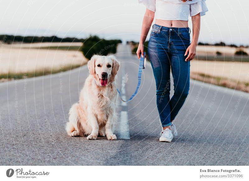 junge Frau, die mit einem schönen Golden Retriever-Hund im Freien steht. Sommerzeit Straße urban Landschaft Feld Sonnenuntergang laufen Glück Training Labrador