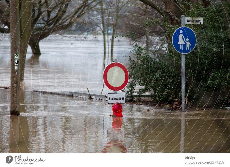 Land unter Wasser Herbst Winter Klimawandel schlechtes Wetter Regen Baum Park Wege & Pfade Verkehrszeichen Verkehrsschild Fußweg Zeichen Schriftzeichen