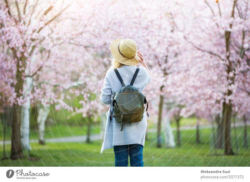 Schöne Frau in Strohhut Reisen in schönen Park mit Kirschbäumen in der Blüte, genießen die Natur im Frühjahr. Tourist mit Rucksack. Rückansicht Abenteuer Rücken