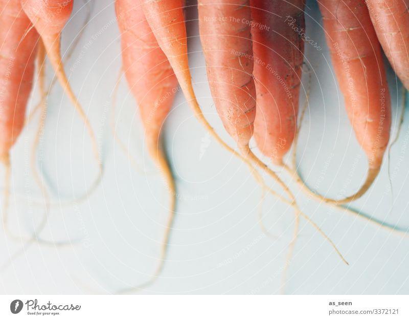 Karotten Möhren Möhrensaft Gemüse Ernährung Vegetarische Ernährung Gesundheit Lebensmittel Farbfoto Bioprodukte frisch lecker Innenaufnahme Diät Essen