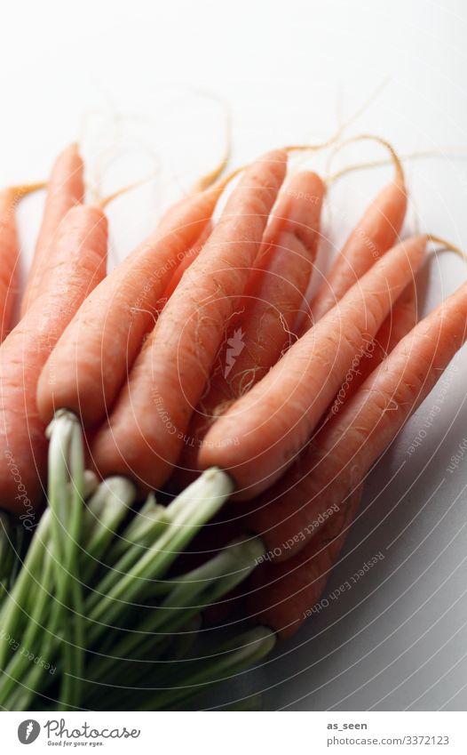 Möhren Karotten Möhrenkraut Möhrengrün Farbfoto Natur Vegetarische Ernährung Gesunde Ernährung Nahaufnahme Gemüse Foodfotografie Bioprodukte Diät Tisch