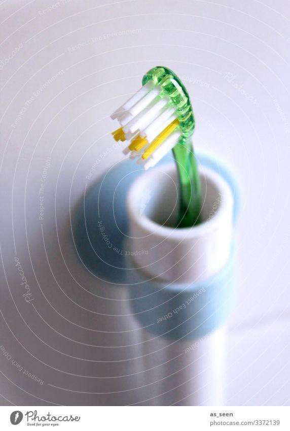 Zahnpflege schön Körperpflege Zahnbürste Gesundheit Gesundheitswesen Kindererziehung Zahnarzt dental stehen hell modern Sauberkeit blau gelb grün weiß