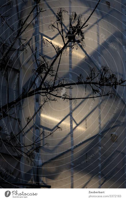 Transparente Plane auf Baugerüst mit Neonlicht, davor Silhouette eines kahlen Baumes Zweige transparent Dämmerung durchsichtig Low Key dunkel Gedeckte Farben