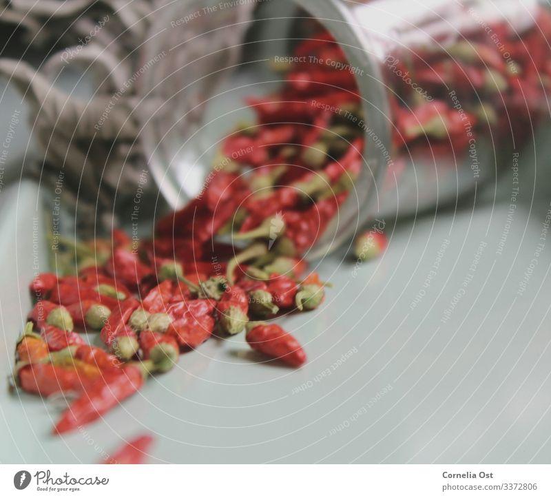 Ganz schön scharf 🌶 Lebensmittel Gemüse Kräuter & Gewürze Ernährung Essen Bioprodukte Glas Gesundheit Gesunde Ernährung Sinnesorgane lecker rot Chili