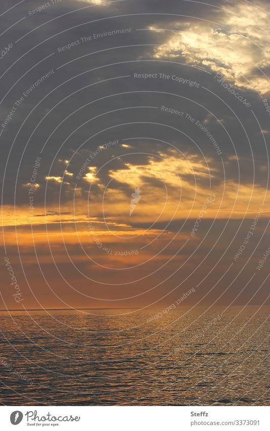 Irische See Umwelt Natur Wasser Wolken Nachthimmel Horizont Schönes Wetter Küste Strand Meer Wales Großbritannien Europa Nordeuropa maritim schön braun orange
