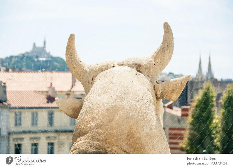 Stier Skulpur aus Stein vor der Stadt Marseille Tierporträt Porträt Kontrast Schatten Licht Tag Hintergrund neutral Farbfoto antik Kulturdenkmal massiv erhaben