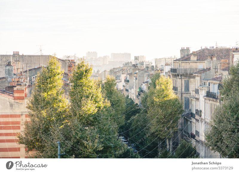 Ausblick über die Dächer von Marseille Sonnenlicht Licht Textfreiraum oben Panorama (Aussicht) Farbfoto Menschenleer Tag Dach Stadtleben Baum Reisefotografie