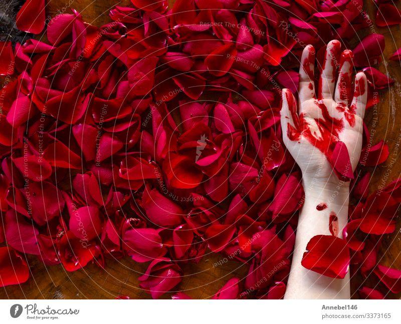Blutverschmierte menschliche Hand liegt in roten Rosenblättern Leben Mensch Mann Erwachsene Finger Erde Nebel Blume Blatt Tropfen Liebe dreckig dunkel grün