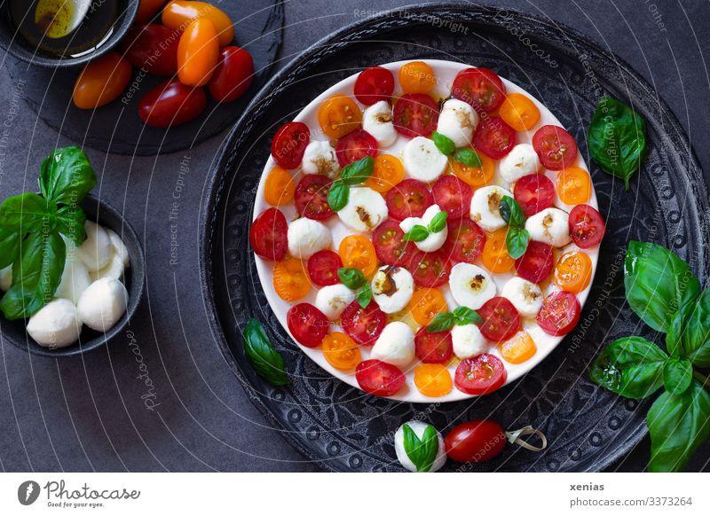 Leckerer Salat mit Tomate, Mozzarella und Basilikum in Muster auf weißem Teller angeordnet Lebensmittel Gemüse Kräuter & Gewürze Öl Olivenöl Essig Salatsoße