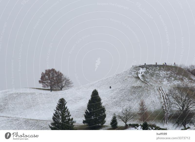 winterlich hügelige Parklandschaft mit Bäumen in exponierter Lage Panorama (Aussicht) Zentralperspektive Starke Tiefenschärfe Kontrast Schatten Licht Tag