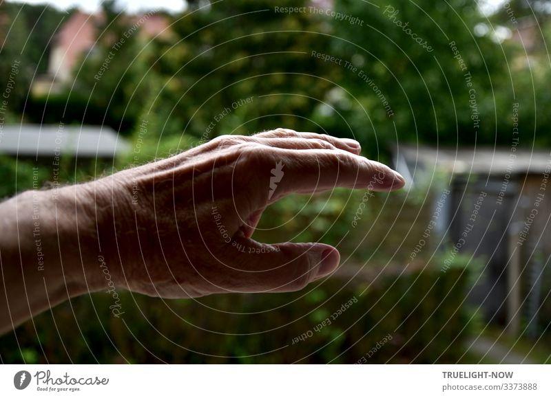 Versuch, meine 'Wolkenhand' - eine T'ai Chi Sequenz - vor Garten Hintergrund ins Bild zu bringen Hand offen schweben cloud hands Finger Daumen Zeigefinger