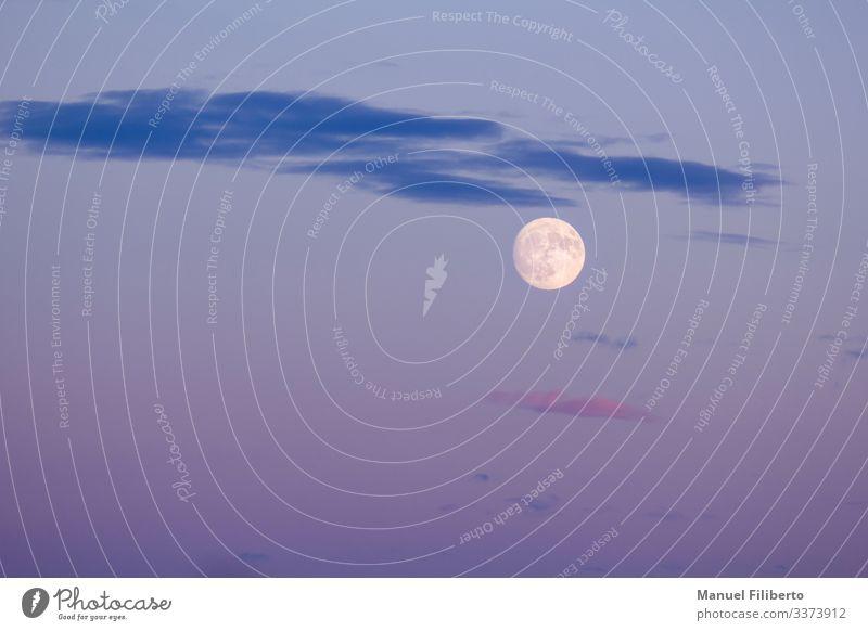 ernster Mond Natur Landschaft Vollmond beobachten berühren Denken glänzend warten ästhetisch fantastisch Neugier schön Erotik feminin blau gelb violett weiß