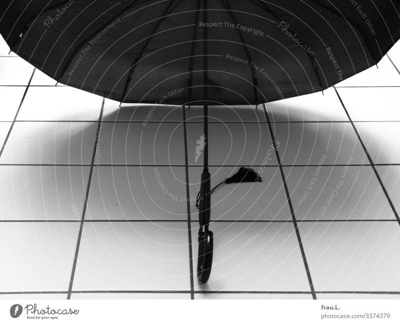 Regenschirm Häusliches Leben Bad stehen schön trocknen Quaste Fliesen u. Kacheln Schwarzweißfoto Innenaufnahme Tag