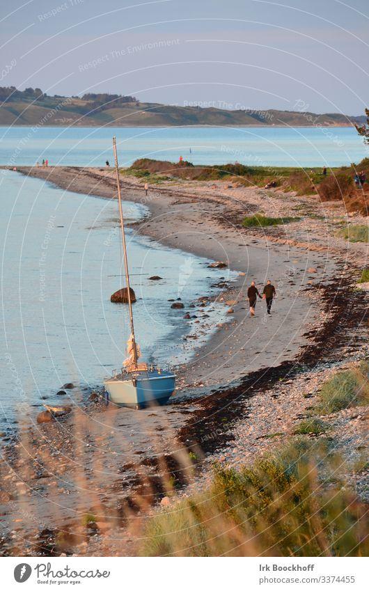 gestrandetes Segelboot mit 2 Strandläufern auf einer Ostseeinsel maritim Außenaufnahme Wasserfahrzeug Meer Himmel Ferien & Urlaub & Reisen nautisch Küste Seenot