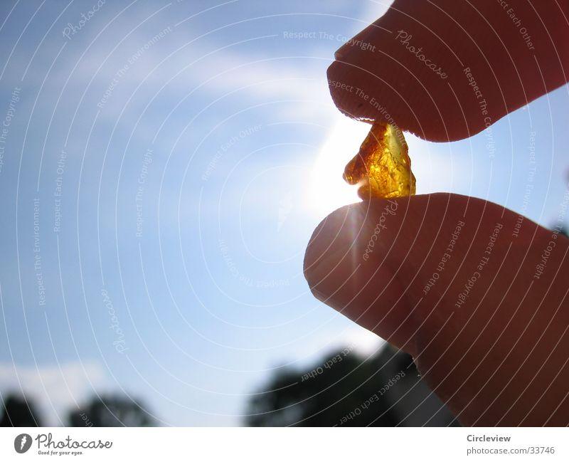 Bernsteinfund an der Ostsee Strand Europa Sonne Nahaufnahme Reflexion & Spiegelung Detailaufnahme Himmel