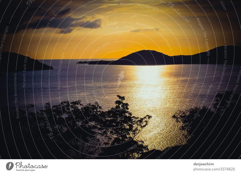 Sonnenuntergang auf Thursday Island. Im Goldenen Schein, das Wasser glänzt. Vorne eine Baumgruppe und hinten ein kleine Insel mit Durchfahrt zum Meer. Freude
