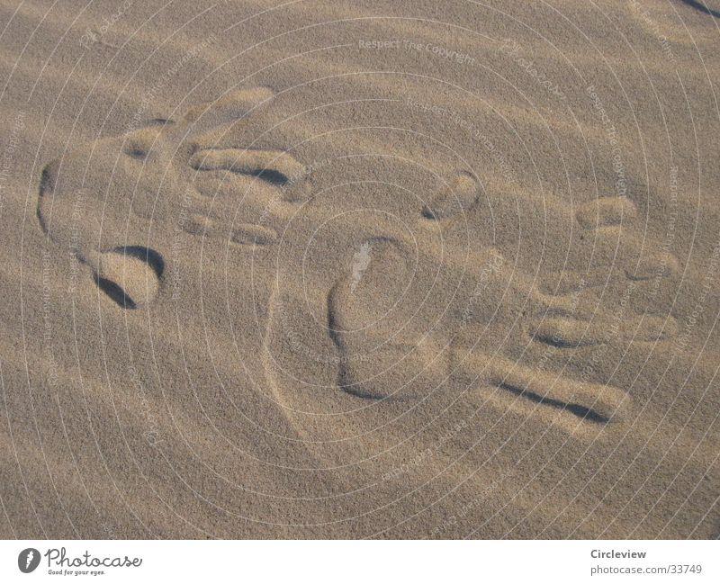 Walk of Fame am Ostseestrand Strand Hand Eindruck Männerhand Europa Stranddüne Wind Sand Nahaufnahme Detailaufnahme Wüste Abdruck