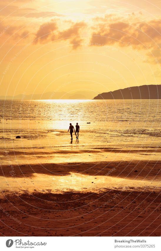 Silhouette von zwei Personen am Ufer des Sonnenuntergangs ruhig Ferien & Urlaub & Reisen Sommer Strand Meer Mensch Mann Erwachsene Freundschaft Paar 2 Himmel