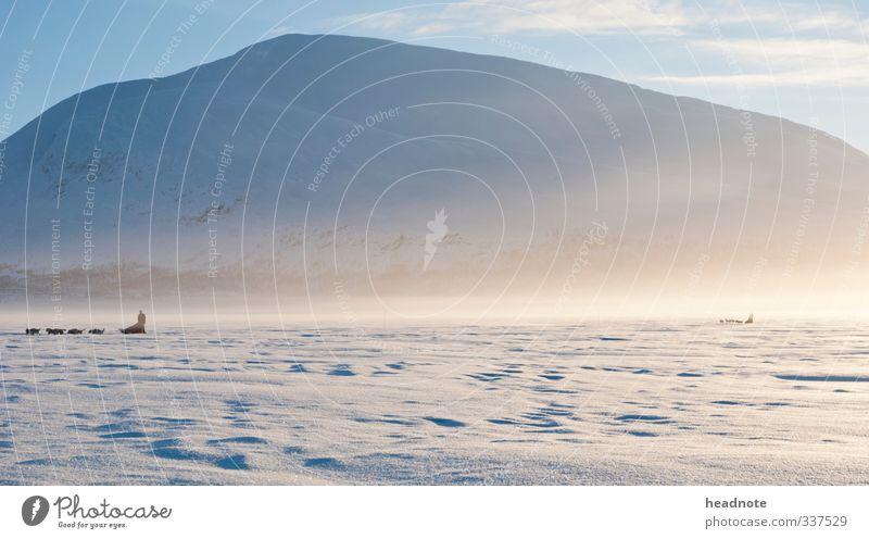 Ice fog Natur Ferien & Urlaub & Reisen blau Landschaft Winter gelb Umwelt kalt Berge u. Gebirge Schnee Freiheit Luft Eis Nebel Klima Abenteuer