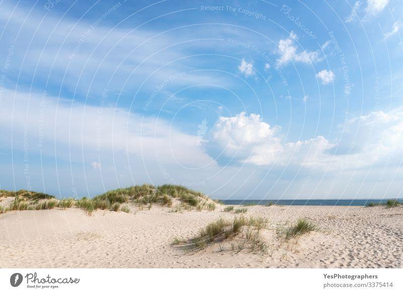 Weiße Sandstrandlandschaft an einem Sommertag auf Sylt Erholung Schönes Wetter Küste Nordsee blau Friesische Insel Deutscher Strand Deutschland