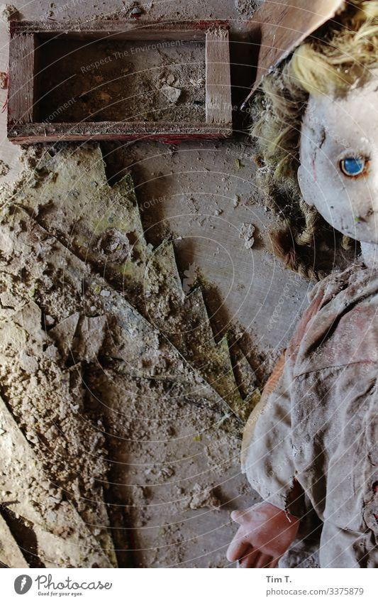 Zeit Ukraine Tod Verfall Vergänglichkeit Zukunft Puppe Puppenauge Farbfoto Innenaufnahme Menschenleer Tag Blick in die Kamera