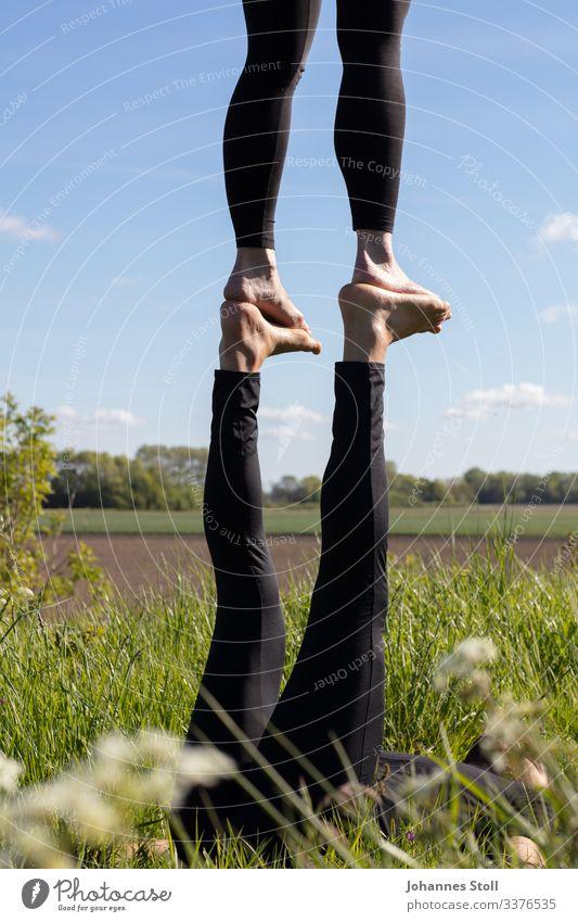 Akrobatik im Grünen Fuß Füße Beine Akroyoga Turnen Balance gleichgewicht Zirkus Artisten Himmel Feld Umwelt Leichtigkeit Vertrauen Foot-to-Foot Flyer Base Zehen