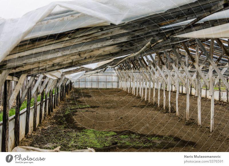 Verlassenes Holz-Plastik-Gewächshaus Lebensmittel Essen Ackerbau Forstwirtschaft Industrie Verantwortung aussetzen Kunststoff Farbfoto Außenaufnahme Morgen Tag