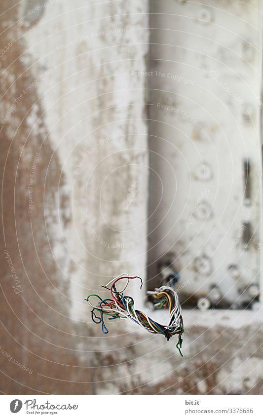 Bunte Kabel, blank, nichtisoliert, ragen aus Kabelrohr, aus der weißen, grauen Wand, unverputzt, auf einer Baustelle von einem Haus / Gebäude. Strom Stromkabel