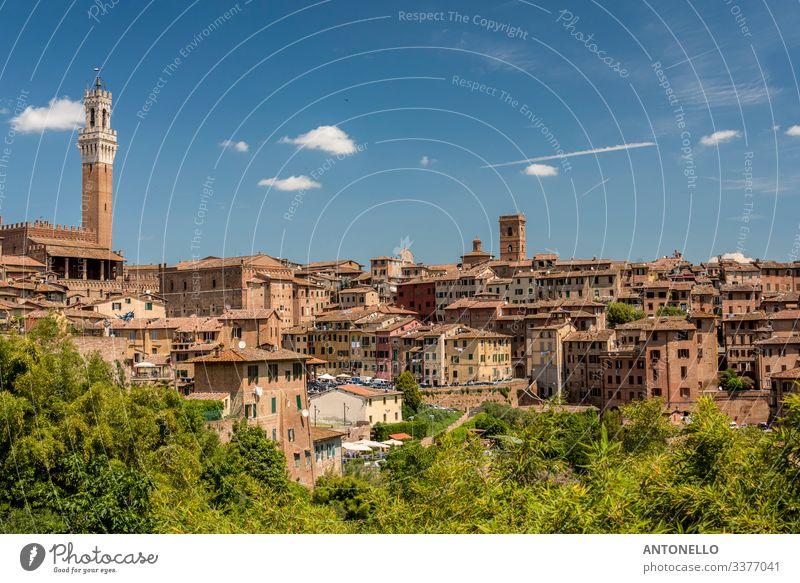 Blick auf Siena von Süden mit dem Mangia-Turm Ferien & Urlaub & Reisen Tourismus Sommer Wohnung Haus Architektur Landschaft Himmel Wolken Frühling