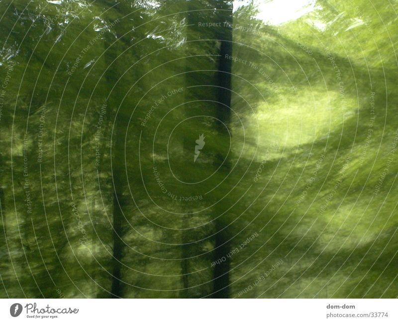 Wald Wald Freizeit & Hobby
