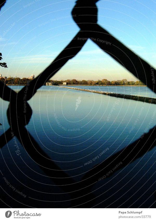 Wasser im See Maschendrahtzaun Zaun Sommerabend Central Park gefangen Gitter Abenddämmerung blau