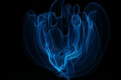 Zarter Schleier (LightPainting) Rauch berühren Bewegung leuchten zeichnen Rauchen Tanzen träumen außergewöhnlich fantastisch schön einzigartig wild weich blau