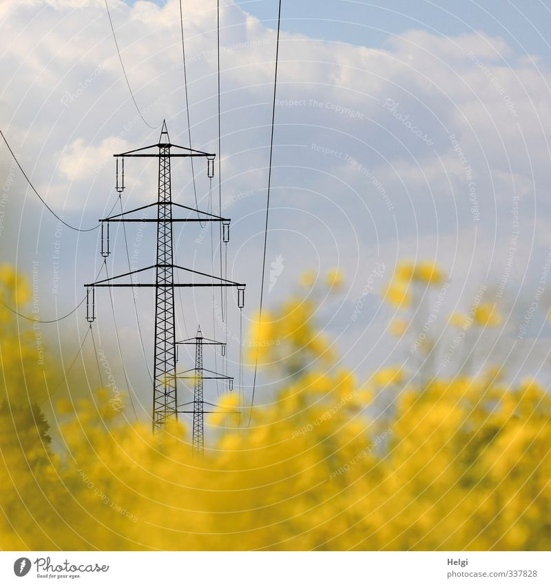 Energie... Energiewirtschaft Erneuerbare Energie Strommast Hochspannungsleitung Elektrizität Umwelt Natur Landschaft Pflanze Himmel Wolken Frühling