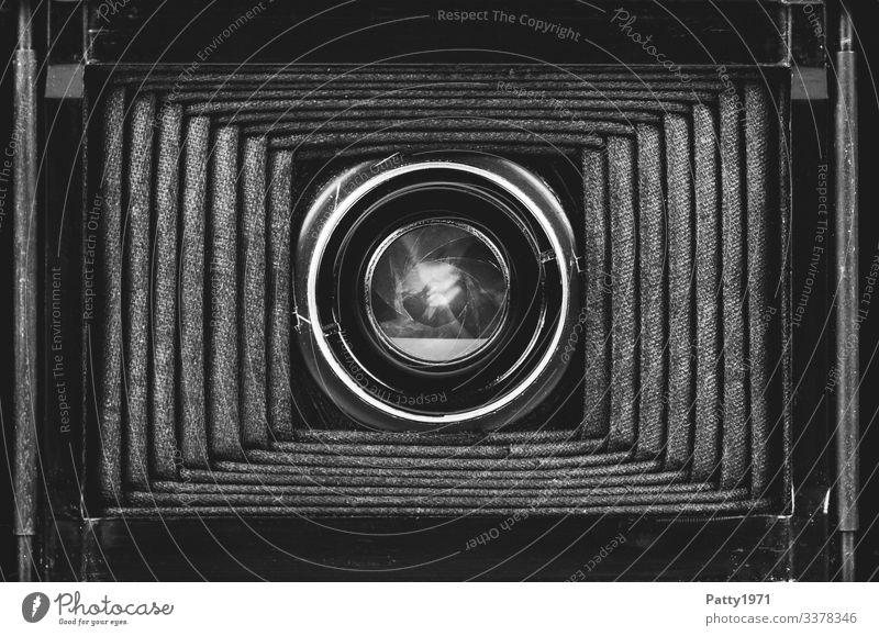 Innenleben einer Balgenkamera Fotokamera Blende Objektiv Fotografie alt komplex Nostalgie Vergangenheit Schwarzweißfoto Nahaufnahme Detailaufnahme Menschenleer