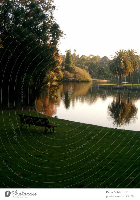 Botanical Garden Natur grün See Park Bank Australien Melbourne