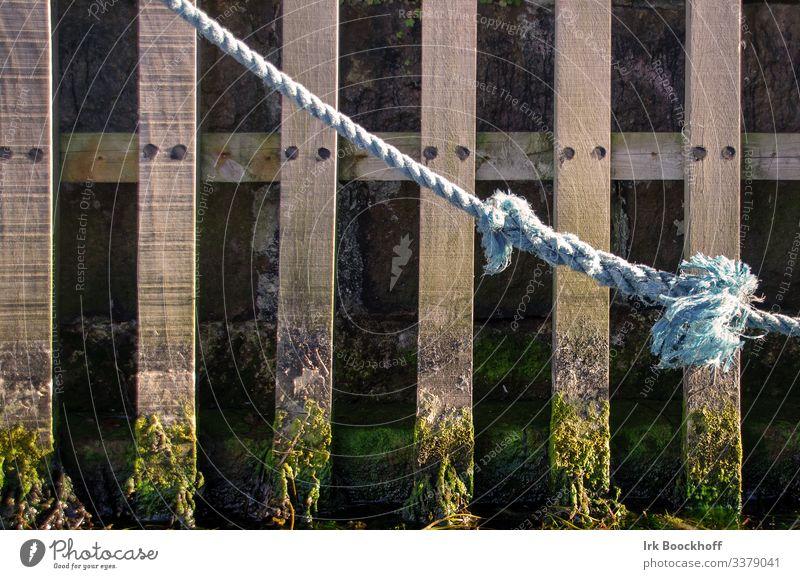 alter Knoten im Hafen vor Spundwand Seil fest Vertrauen Sicherheit entdecken Farbfoto Textfreiraum links
