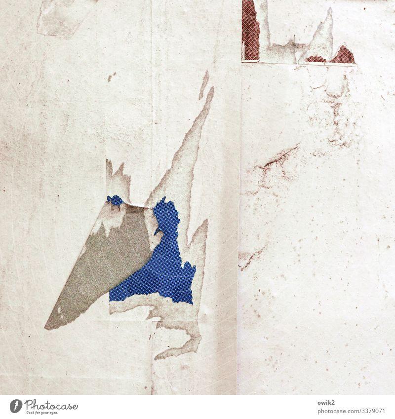 Stuntman Kopf Nase Papier Litfaßsäule kaputt Zufall Beton hängen trashig Niveau Zahn der Zeit anstrengen Farbfoto Außenaufnahme Nahaufnahme Detailaufnahme
