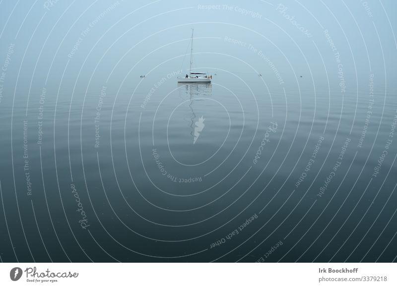 Segelboot auf der Ostsee im Nebel bei Flaute ruhig Segeln Natur Wasser Wolkenloser Himmel Nordsee Meer Sportboot Jacht Segelschiff Ferne maritim blau Sehnsucht