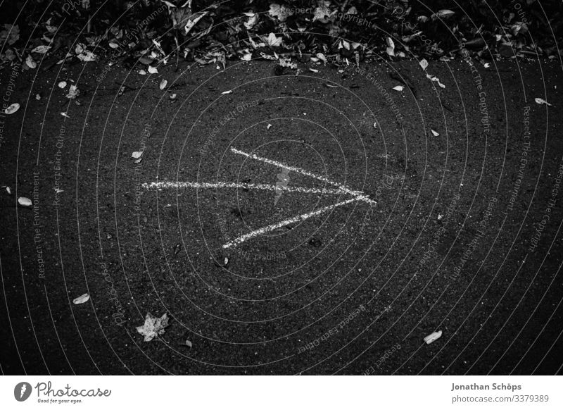 Pfeil auf Waldweg zeigt nach rechts Abstrakter schwarzer Hintergrund Achtsamkeit Außenaufnahme Besinnung Chemnitz Darkmode Herbst Jahreszeit Laub