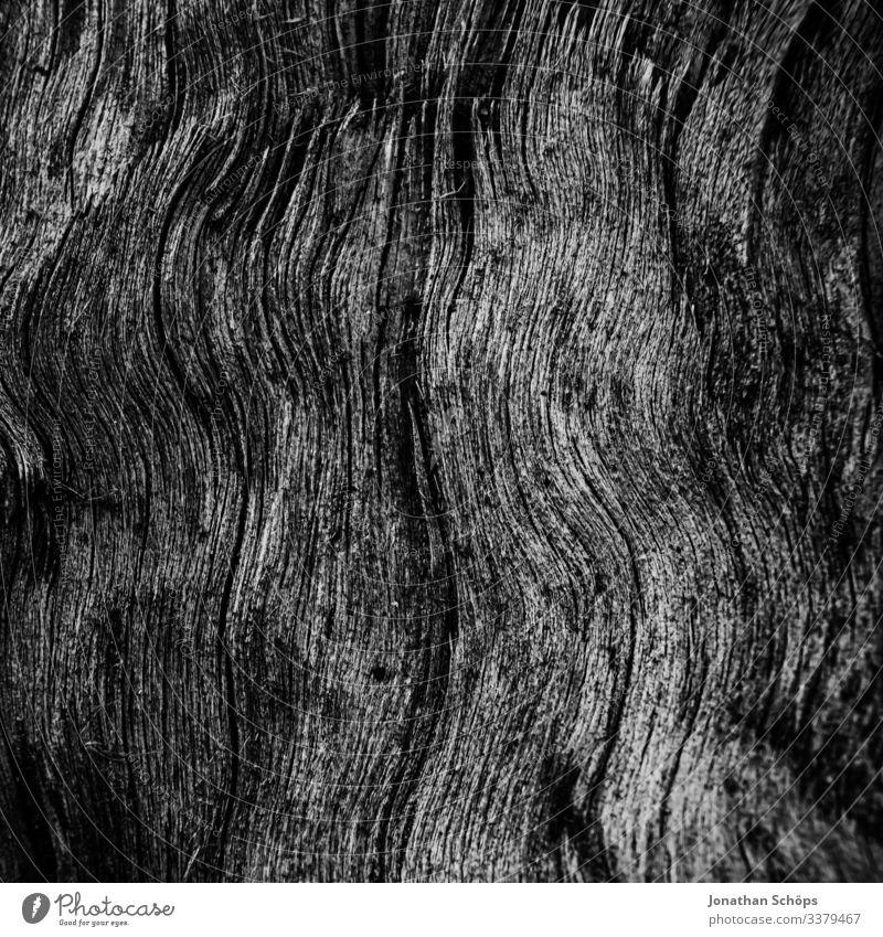 Minimale schwarze Textur im Hintergrund Holz Abstrakter schwarzer Hintergrund Herbst Schwarze Textur Minimales Schwarz Minimalismus Minimalistisches Schwarz
