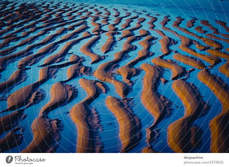 Wellenmuster ( Rippelmarke ) entstehen  bei Ebbe am Strand bei ablaufendem Wasser. Durch das Sonnenlicht erscheint es in blauer Farbe. Natur Meer Farbfoto Küste