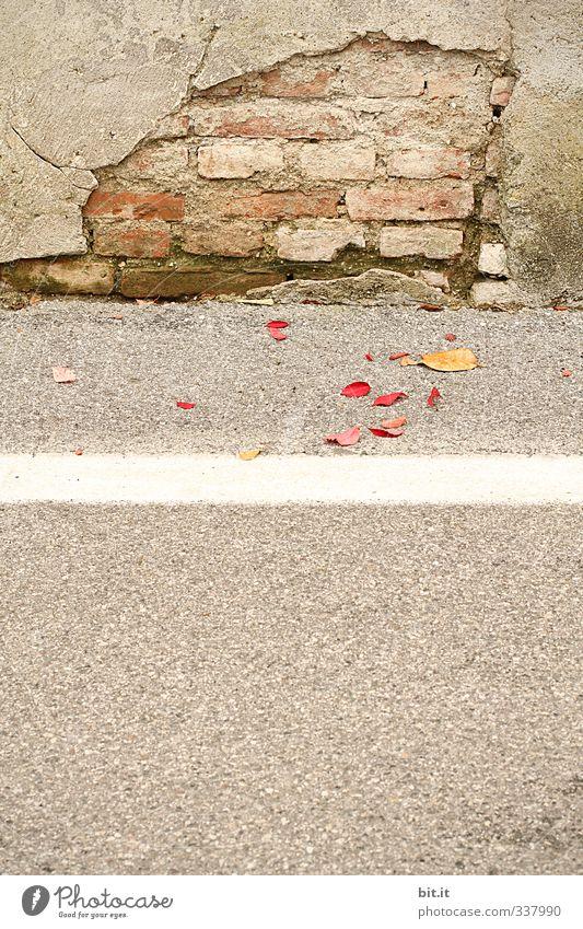 ausgemauert alt Stadt Blatt Wand Straße Herbst Wege & Pfade Mauer Stein Linie braun Fassade Schilder & Markierungen Perspektive kaputt Bodenbelag
