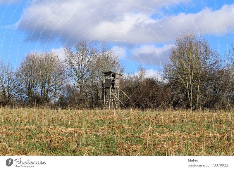 Holz Hirsche hoch Jagd Jäger Landschaft Aussicht Natur beobachten ländlich Sitz stehen Turm Wildnis Feld Außenaufnahme Hütte Eber oben Wolken Baum Deutschland