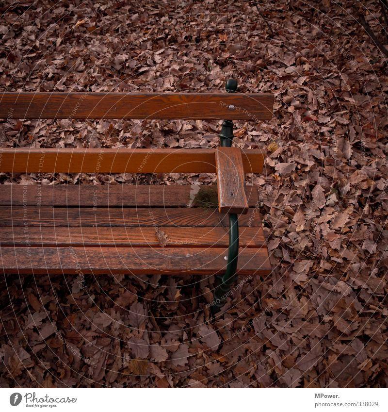 sichere bank Blatt dunkel Herbst Holz braun Park sitzen Bank Herbstlaub