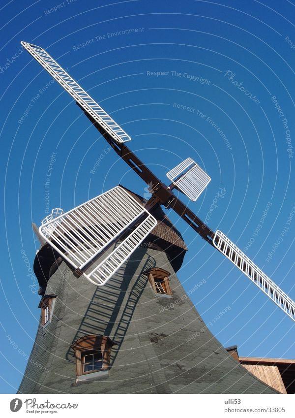 Windmühle Architektur Wind Flügel Handwerk historisch diagonal Blauer Himmel Windmühle Müller