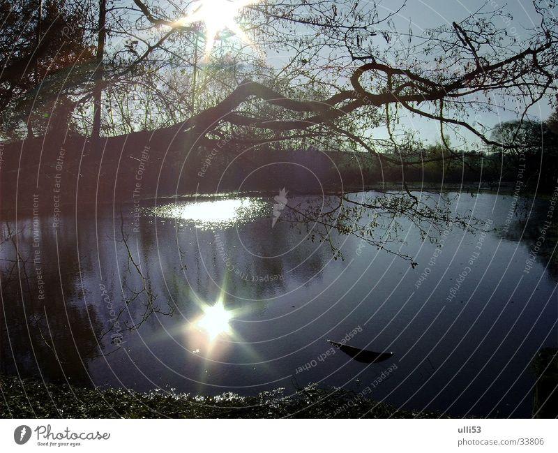 Herbsttag Wasser Sonne Seeufer