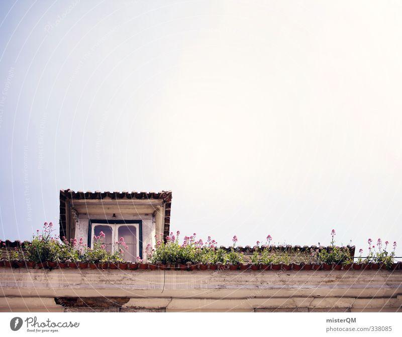 Lisbon's roofs II Himmel Autofenster Kunst ästhetisch Dach verfallen Portugal sommerlich Lissabon Unkraut Sommertag