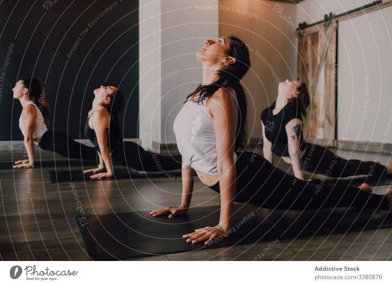 Menschen, die Yoga in nach oben gerichteter Hundehaltung praktizieren sportlich positionieren üben Dehnung Klasse Training beweglich Übung Pose Körper
