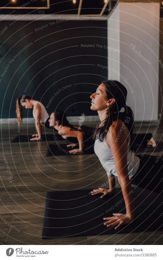 Frauen, die Yoga in nach oben gerichteter Hundehaltung praktizieren sportlich positionieren üben Dehnung Klasse Training beweglich Übung Pose Körper